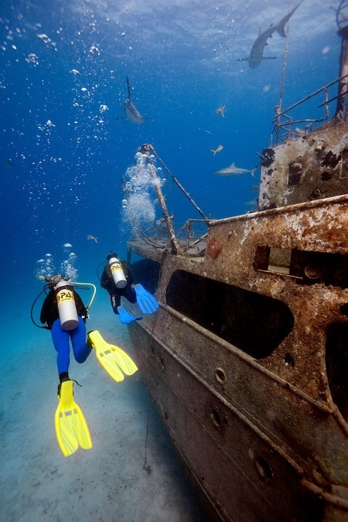 Wreck dive Guadeloupe