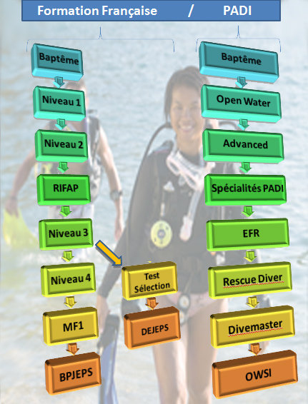 Formation plongée Paris Marseille, cours plongée Paris Marseille