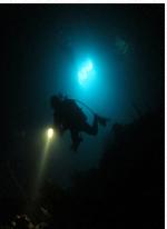 Night Dive Adventure