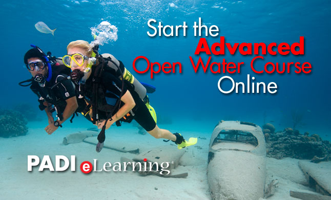 Adventures in diving e-learning option