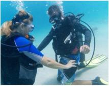 PADI Suba Diver Kurs