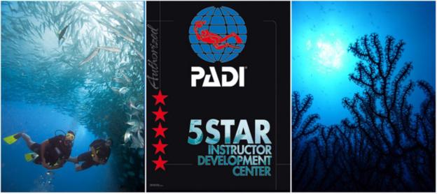 PADI Open Water Kurs