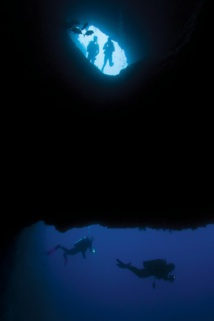 Nachtauchen Guadeloupe
