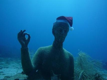 Plongée dans la Réserve Cousteau