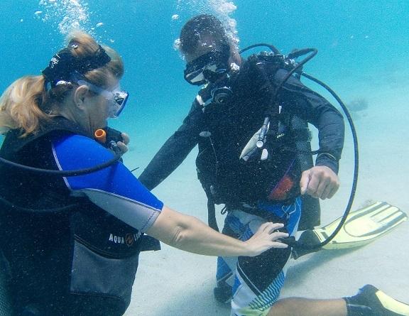 Devenez MONITEUR de PLONGEE, avec Atlantis Formation Guadeloupe