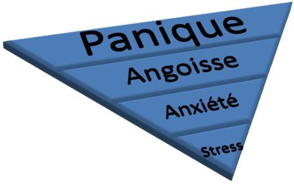 Les états de stress