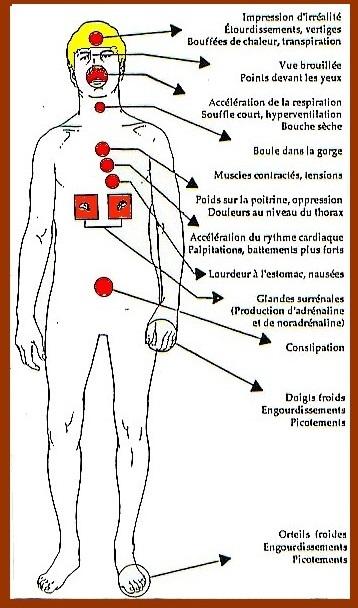 schéma récapitulatif des symptômes