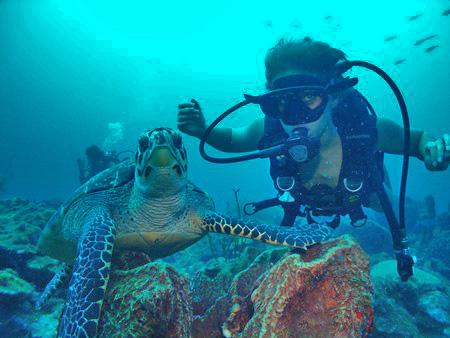 LE NIVEAU 1:  Plongeur Encadré à  20 Mètres  (PE20) avec ATLANTIS FORMATION GUADELOUPE