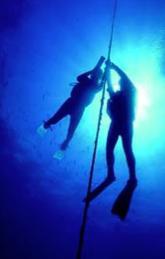 Devenez Plongeur Autonome, avec Atlantis Formation Guadeloupe