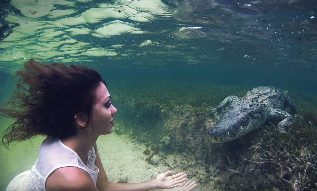 Plongée crocodile