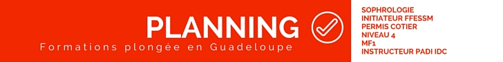 Quand plonger en Guadeloupe ?