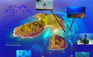 Le Jardin de Corail, petit coin de paradis  sous la mer, menacé