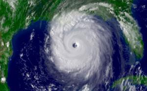 La réserve Cousteau après le passage de l'ouragan Maria