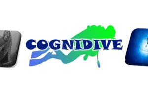 CogniDive : la plongée pour soigner le stress post-traumatique chez les militaires