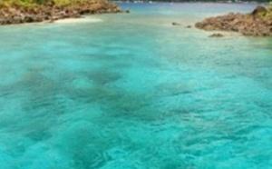 Bouillante, faites des bulles dans la capitale de la plongée en Guadeloupe
