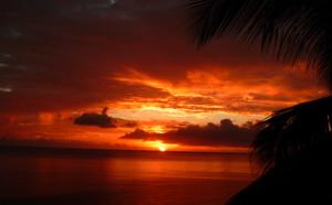 Séjour plongée Guadeloupe, partez pour des vacances sous-marine aux Antilles