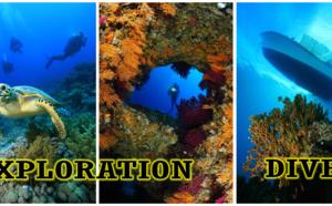 Explorations en Guadeloupe pour amateurs et passionnés de plongée qui croyaient avoir tout vu !