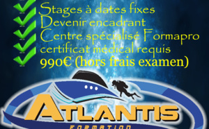 Formation Niveau 4 plongée Guadeloupe