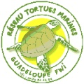 membre réseau tortues marines guadeloupe